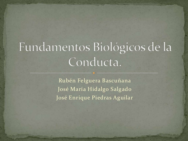 Rubén Felguera Bascuñana José María Hidalgo SalgadoJosé Enrique Piedras Aguilar