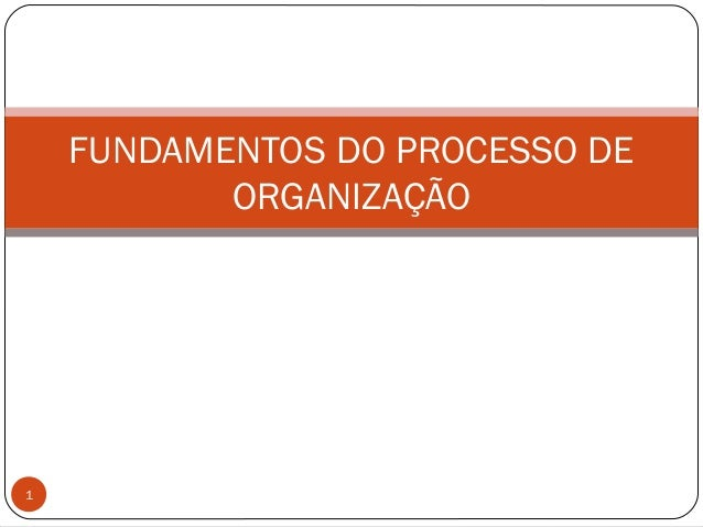 FUNDAMENTOS DO PROCESSO DEORGANIZAÇÃO1