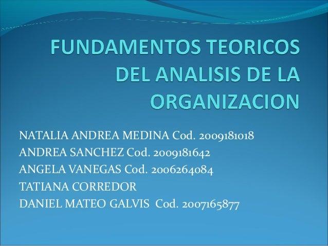 NATALIA ANDREA MEDINA Cod. 2009181018