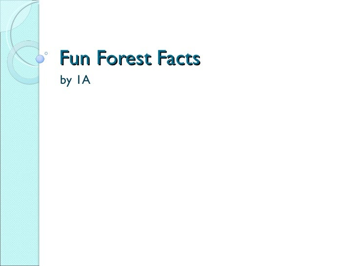 Fun Forest Facts by 1A