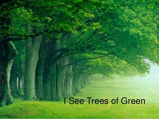 I See Trees of Green
