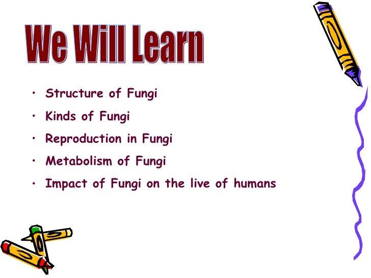 We Will Learn  <ul><li>Structure of Fungi </li></ul><ul><li>Kinds of Fungi </li></ul><ul><li>Reproduction in Fungi </li></...