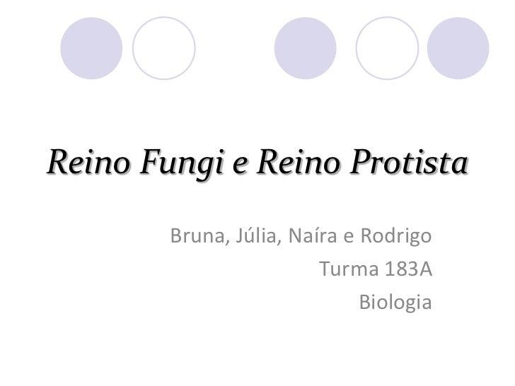 Reino Fungi e Reino Protista<br />Bruna, Júlia, Naíra e Rodrigo<br />Turma 183A<br />Biologia<br />
