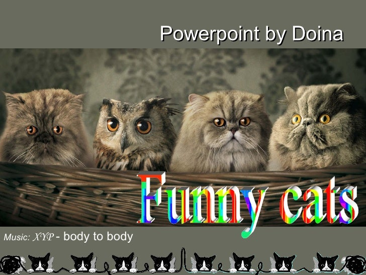 Funny cats Music:   XYP  - body to body Powerpoint by Doina