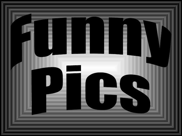Funny Pics2