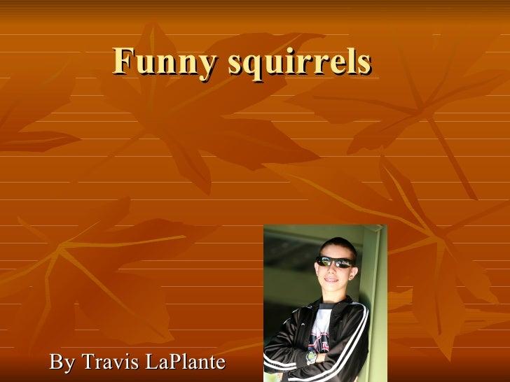 Funny squirrels  By Travis LaPlante