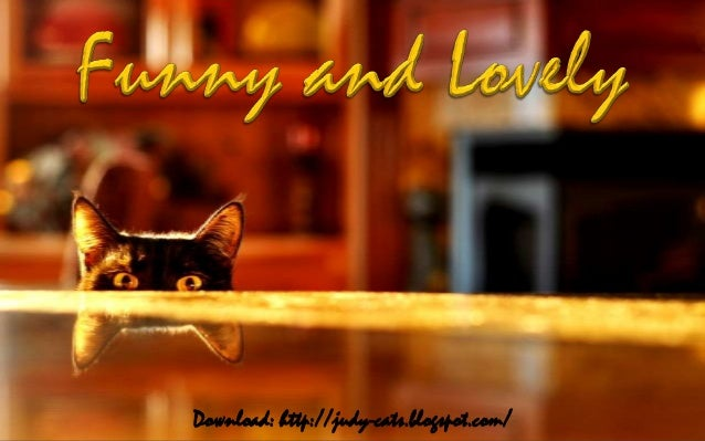 Download: http://judy-cats.blogspot.com/