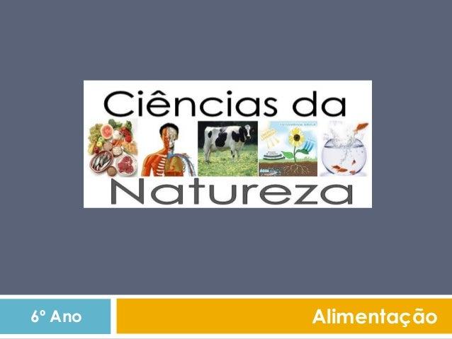 Função dos nutrientes 1