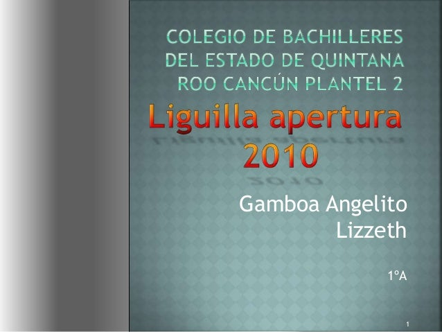 Gamboa Angelito Lizzeth 1ºA 1
