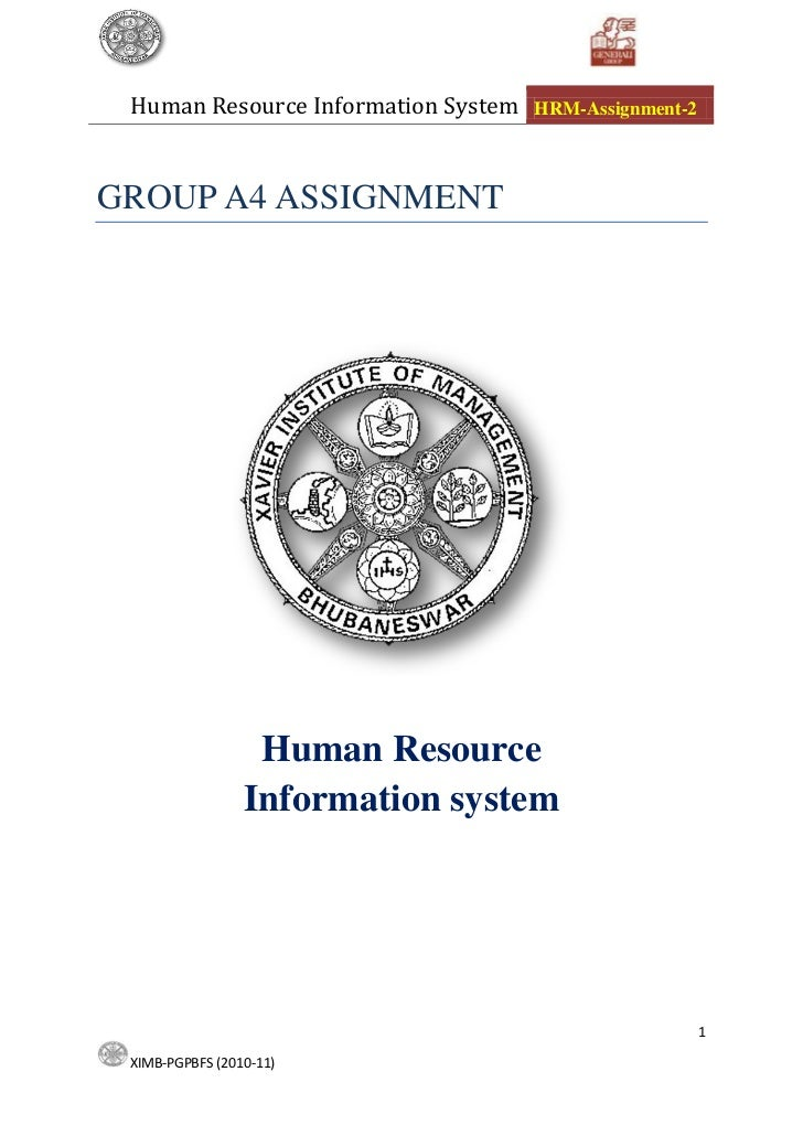 Management Information System Assignment
