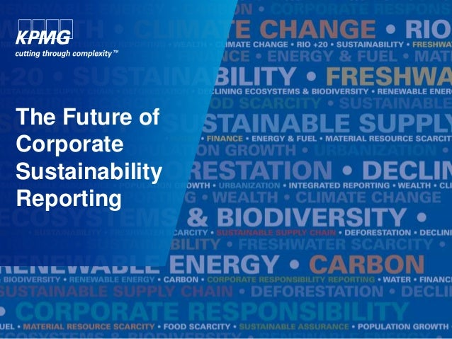 The Future of Corporate Sustainability Reporting