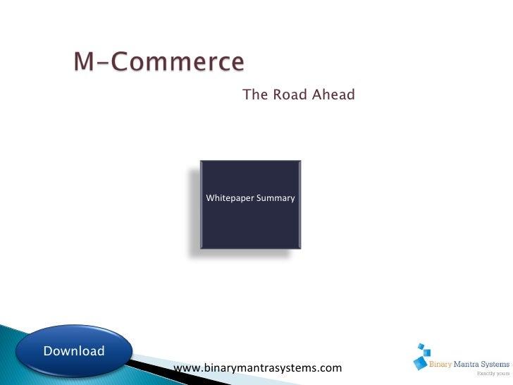 www.binarymantrasystems.com Whitepaper Summary The Road Ahead Download