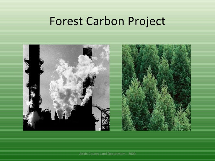Forest Carbon Project Aitkin County Land Department - 2009