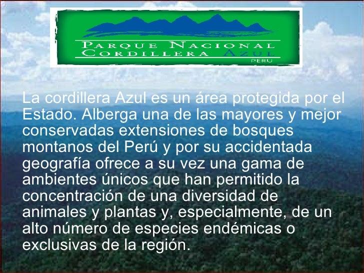 La cordillera Azul es un área protegida por el Estado. Alberga una de las mayores y mejor conservadas extensiones de bosqu...