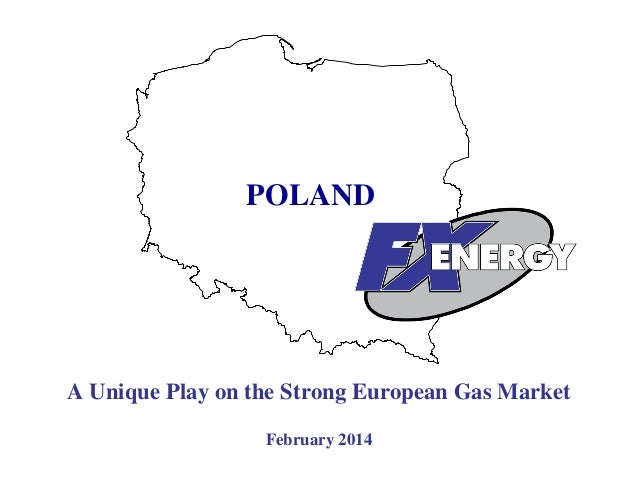 POLAND  A Unique Play on the Strong European Gas Market February 2014 1