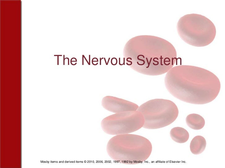 The Nervous SystemMosby items and derived items © 2010, 2006, 2002, 1997, 1992 by Mosby, Inc., an affiliate of Elsevier Inc.