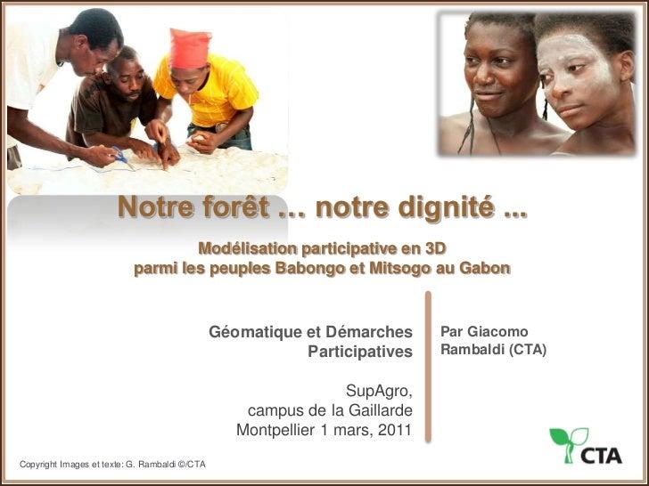 Notre forêt … notre dignité ...<br />Modélisation participative en 3D parmi les peuples Babongo et Mitsogo au Gabon<br />G...