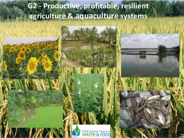 G2 - Productive, profitable, resilient agriculture & aquaculture systems  1
