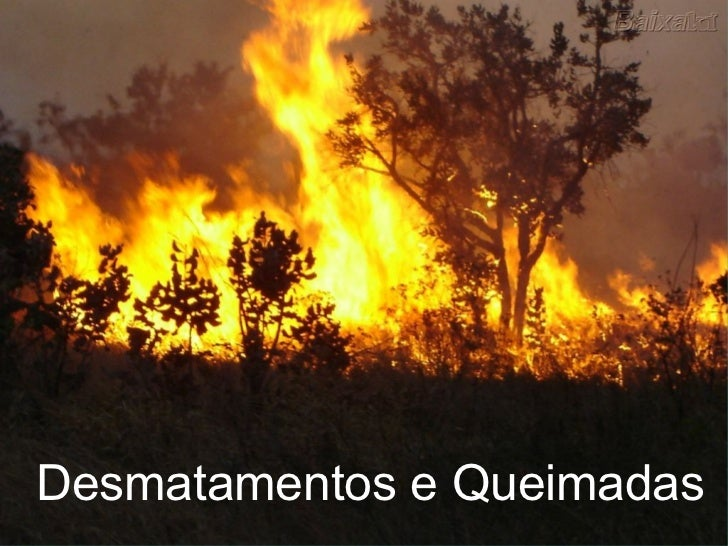 Desmatamentos e Queimadas