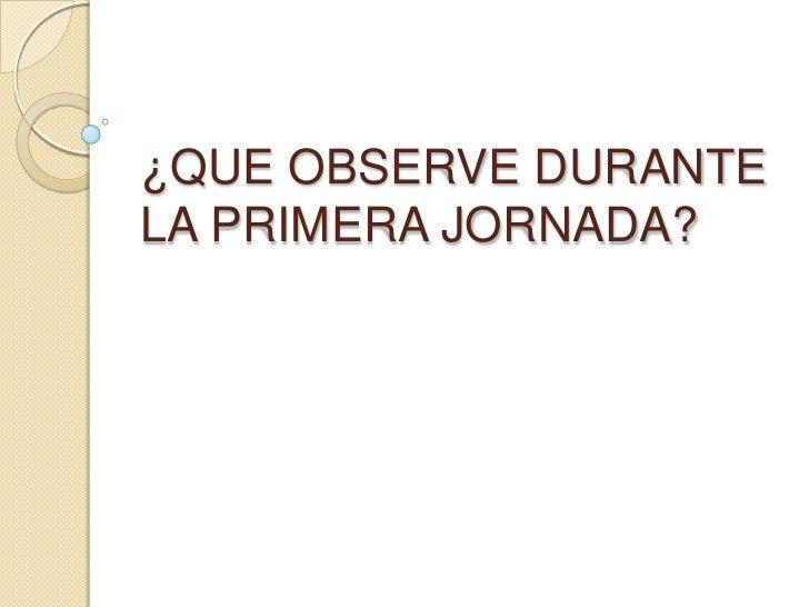 ¿QUE OBSERVE DURANTE LA PRIMERA JORNADA?<br />