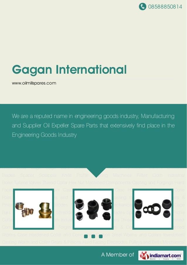 Gagan international