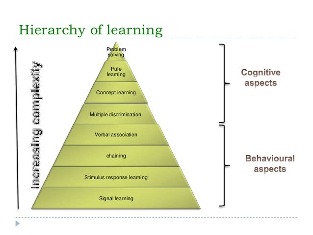 Gagne's Nine Levels of Learning