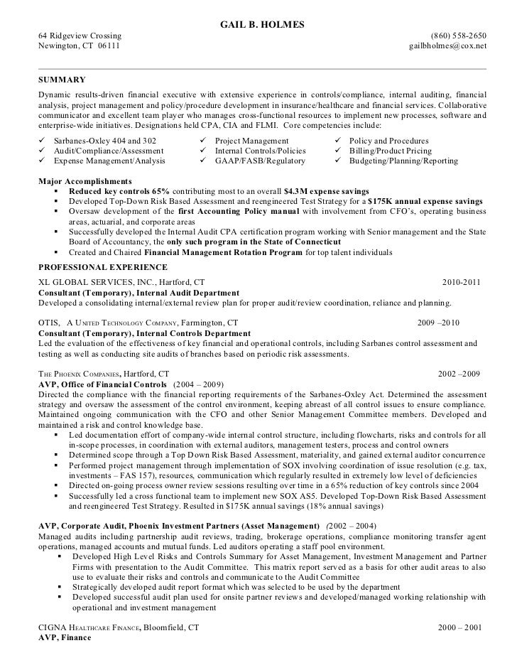 Nice Sample Resume Chief Auditor Sle Resume An Expert Resume Inside External Auditor Resume