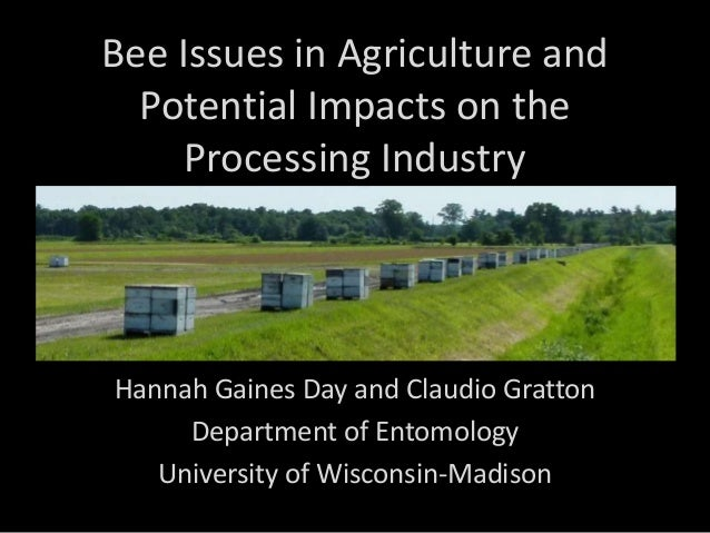 Bee Issues in Agriculture and Potential Impacts on the Processing Industry  Hannah Gaines Day and Claudio Gratton Departme...
