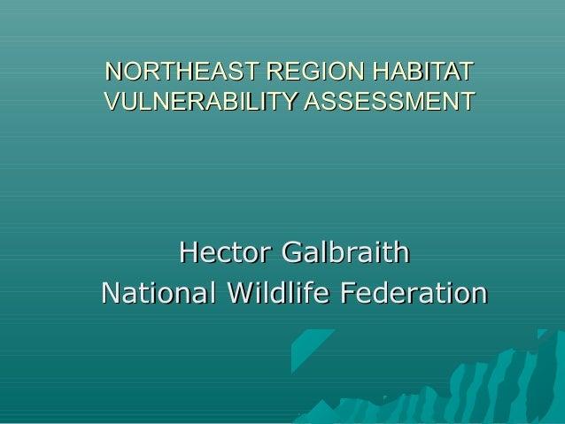 NORTHEAST REGION HABITATNORTHEAST REGION HABITAT VULNERABILITY ASSESSMENTVULNERABILITY ASSESSMENT Hector GalbraithHector G...