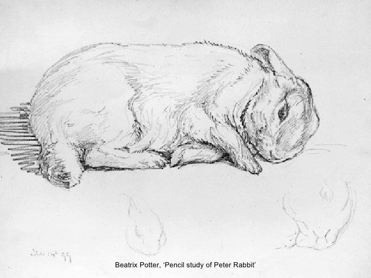 Beatrix Potter, 'Pencil study of Peter Rabbit'