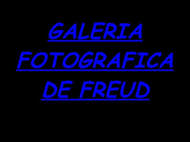 GALERIA FOTOGRAFICA DE FREUD