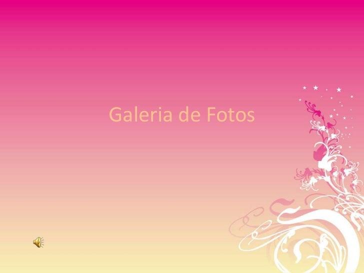 Galeria de Fotos<br />