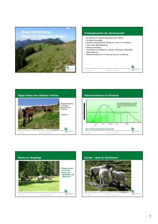 1 Bewirtschaftung – Basis für gesunde Böden Problembereiche der Almwirtschaft Zu geringe und ungleiche Bestoßung der Fläch...