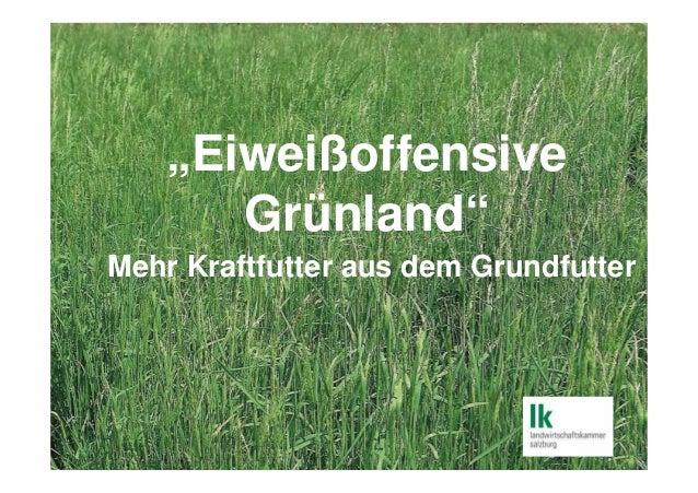 """""""Eiweißoffensive Grünland"""" Mehr Kraftfutter aus dem Grundfutter"""