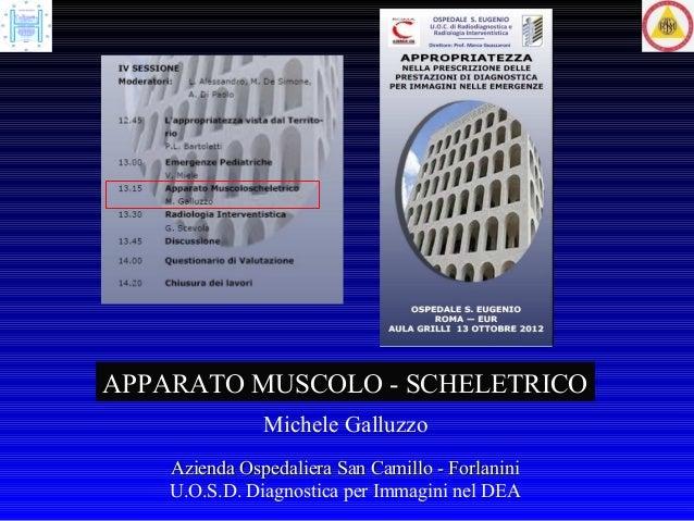 APPARATO MUSCOLO - SCHELETRICO               Michele Galluzzo    Azienda Ospedaliera San Camillo - Forlanini    U.O.S.D. D...