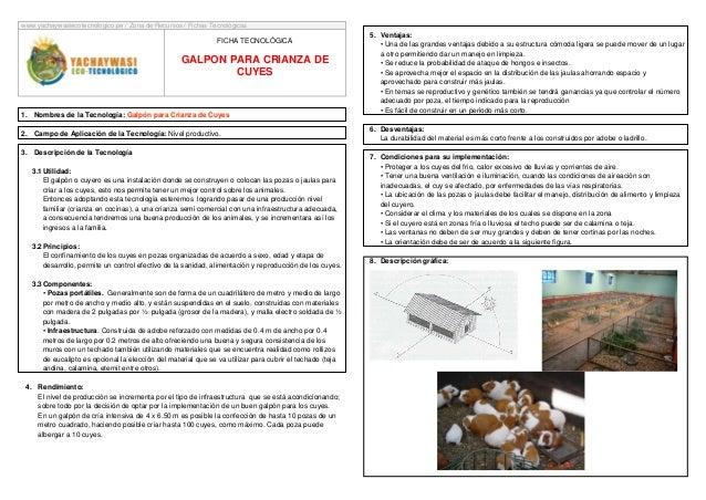 www.yachaywasiecotecnologico.pe / Zona de Recursos / Fichas Tecnológicas  FICHA TECNOLÓGICA  GALPON PARA CRIANZA DE CUYES ...