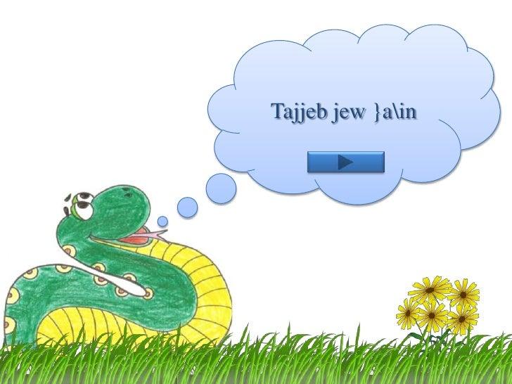 Tajjebjew }ain<br />