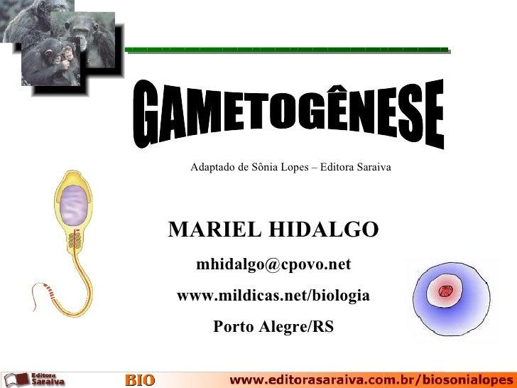 Adaptado de Sônia Lopes – Editora SaraivaMARIEL HIDALGO  mhidalgo@cpovo.netwww.mildicas.net/biologia     Porto Alegre/RS