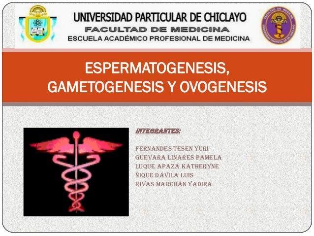 ESPERMATOGENESIS, GAMETOGENESIS Y OVOGENESIS Integran