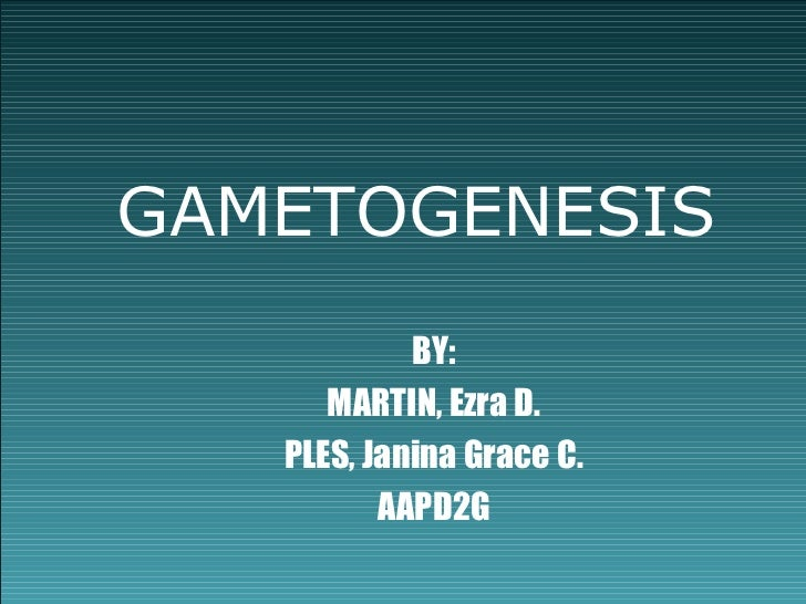 GAMETOGENESIS            BY:      MARTIN, Ezra D.   PLES, Janina Grace C.          AAPD2G