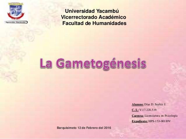 Universidad Yacambú Vicerrectorado Académico Facultad de Humanidades Alumno: Díaz D. Seylitz J. C. I.: V-17.228.519. Carre...