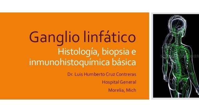 Ganglio linfático Histología,biopsia e inmunohistoquímica básica Dr. Luis Humberto Cruz Contreras Hospital General Morelia...
