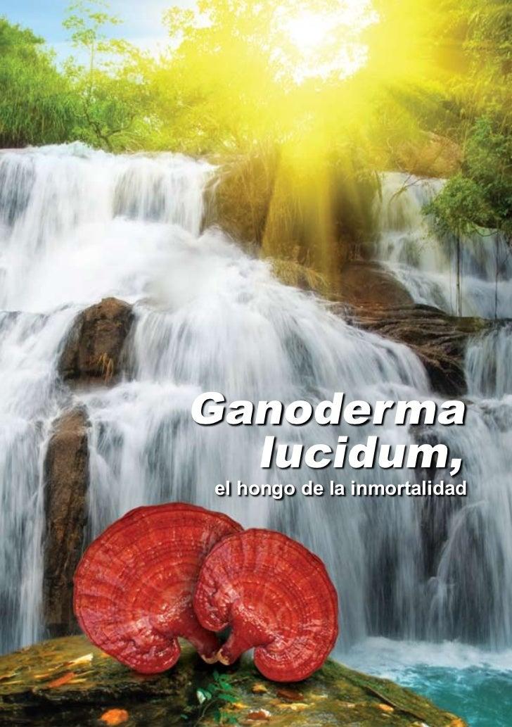 Ganoderma  lucidum,el hongo de la inmortalidad
