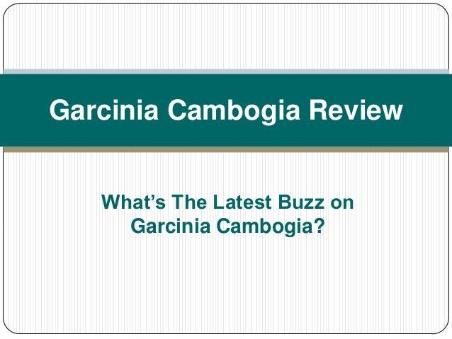 Garcinia Cambogia ReviewWhat's The Latest Buzz onGarcinia Cambogia?