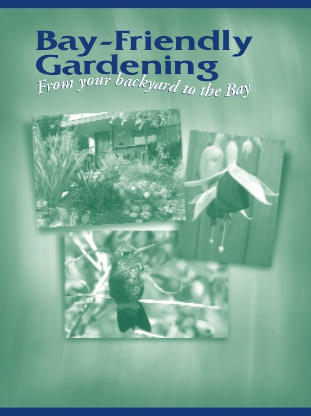 Bay Friendly Gardening: From Your Backyard to the Bay