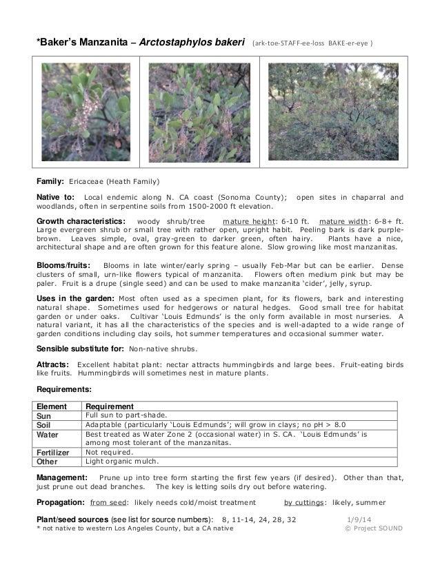 Gardening sheet   arctostaphylos bakeri