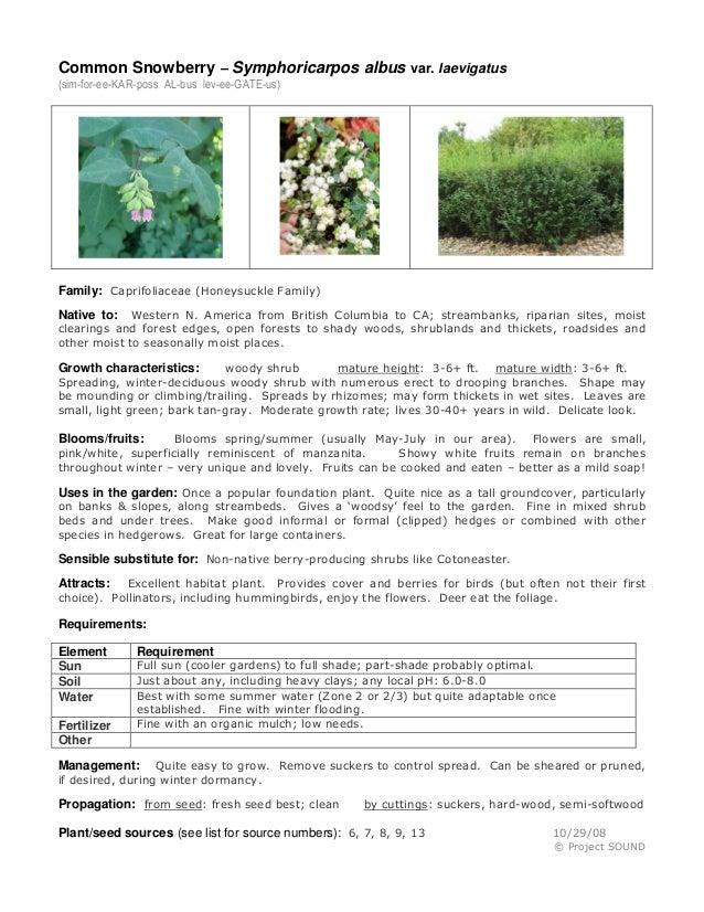 Gardening sheets   aug 2013