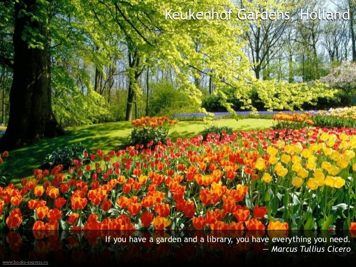 Keukenhof Gardens, Holland                       If you have a garden and a library, you have everything you need.       ...