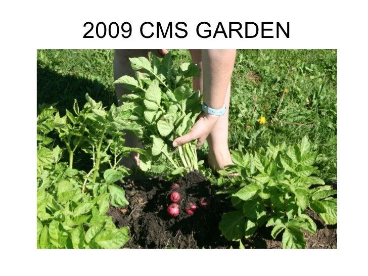 Garden slideshow2009