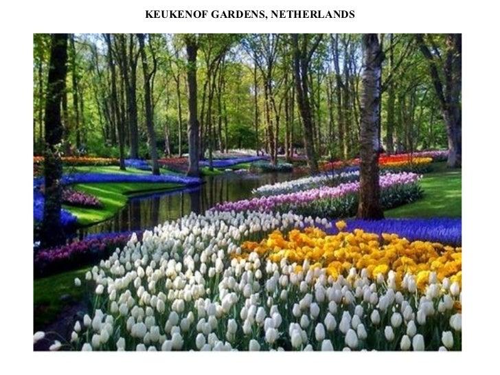 KEUKENOF GARDENS, NETHERLANDS
